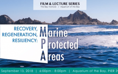 RECOVERY, REGENERATION, RESILIENCY: MARINE PROTECTED AREAS