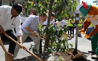 TREE PLANTINGS IN DOWNTOWN SAN FRANCISCO USHER IN GLOBAL CLIMATE ACTION SUMMIT – 9/11/2018