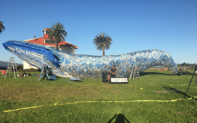 Ocean plastics art at Crissy Field in San Francisco