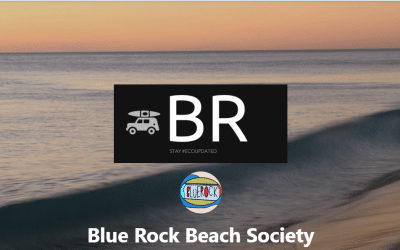 WED Event (Los Angeles, US): Blue Rock Beach Society's Venice Beach Cleanup